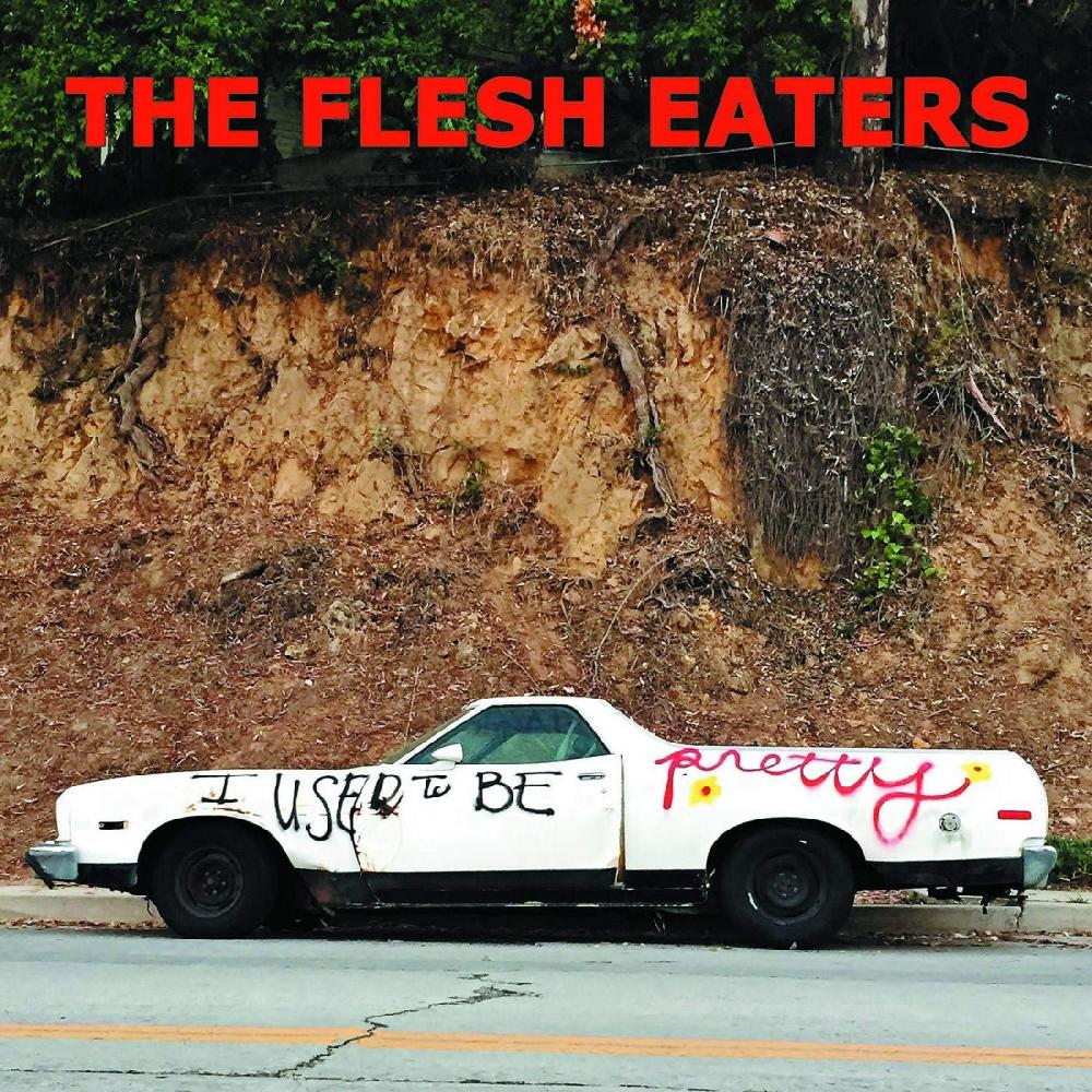 FLESH EATERS - I USED TO BE.. -DOWNLOAD-